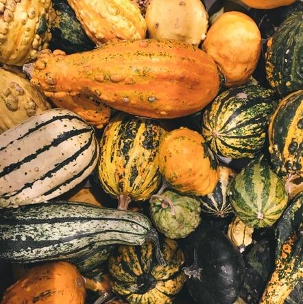 Légumes cagette